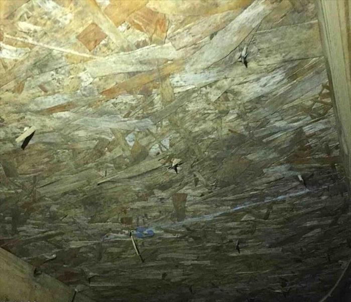 There might be more that dust in the Attic.  Before