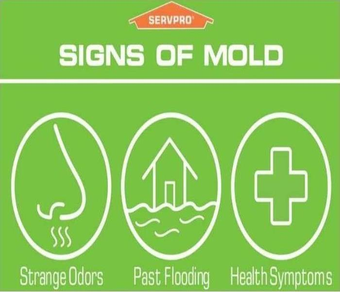 Don't wait until you see the mold to call.