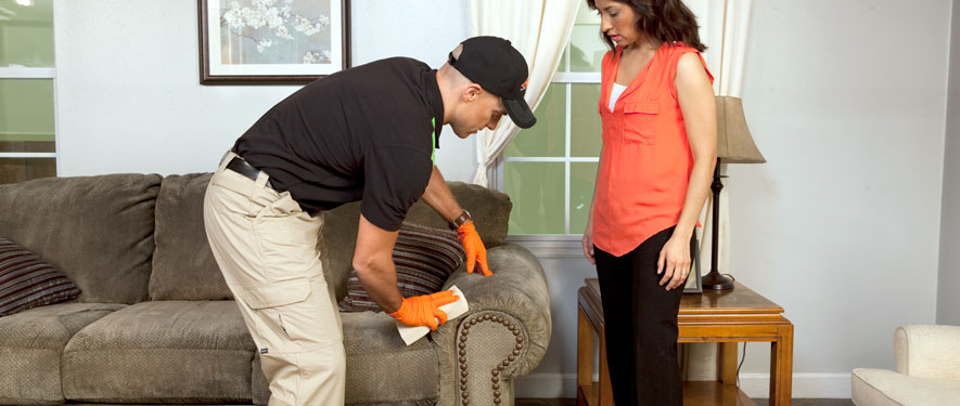 Baltimore's Inner Harbor, MD carpet upholstery cleaning